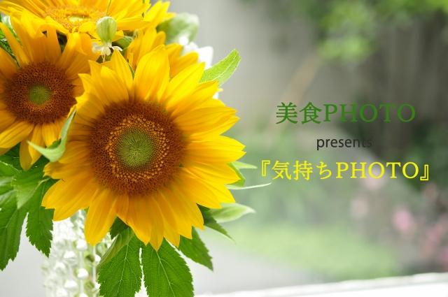 気持ちPHOTO3_DSC0587 (2) (640x425)