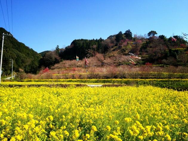 西川花祭り