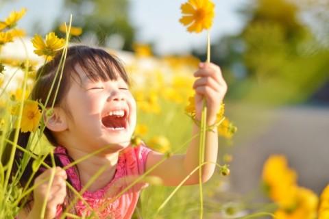ひまわり女の子笑顔めいっぱい